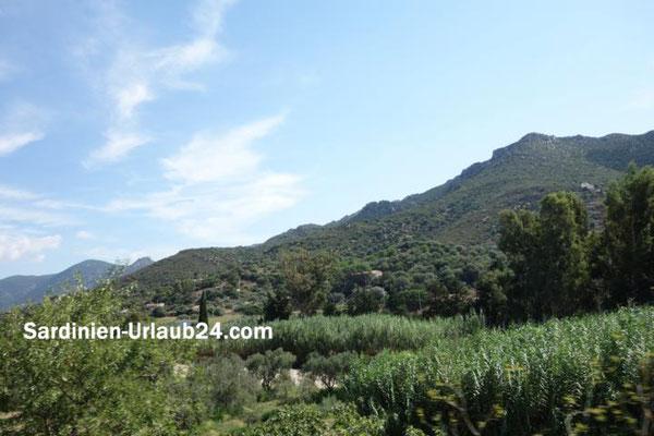 Copyright by Sardinien-Urlaub24.com Bernhard Lehensteiner Atemberaubende Landschaft Sardiniens 2
