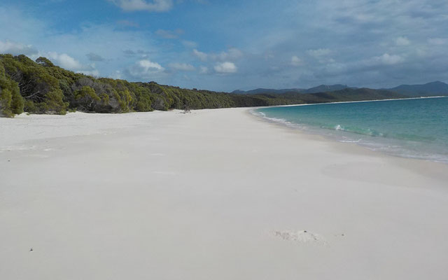Quarzsand am Whitehaven Beach