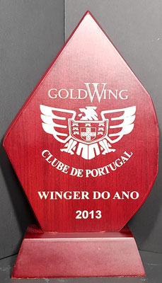 WINGER ANO 2013