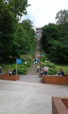 Ein Blick in den Park.