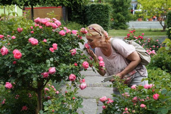 Oh richt die Rose toll....