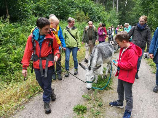Eselwanderung. 14. Juli 2019 um Bad Salzdetfurth. Foto: Nadine Grobeis