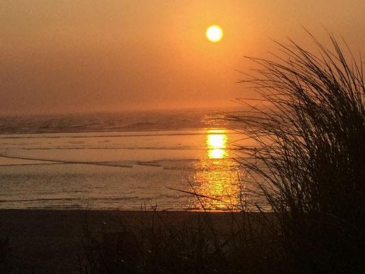 8 Dinge die tun unbedingt auf Langeoog tun solltest