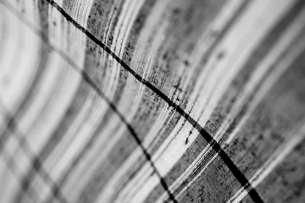 Linea / photo / 2014 糸