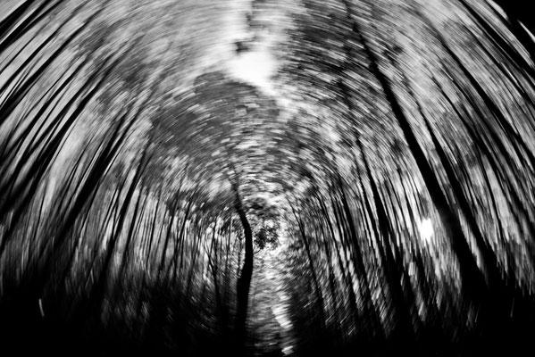 Whirlwind / photo / 2017 脱出