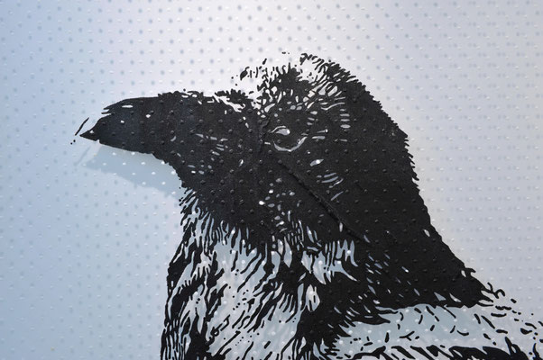Cranky Crow / acrylic on tulle / 150 x 200 cm / 2017 (part)