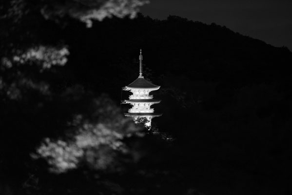 Koyasunoto / photo / 2016 子安塔