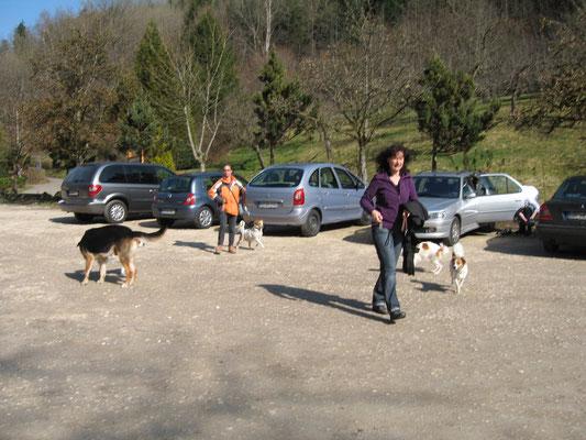 Ankunft von Abby,Fenja und Aimi
