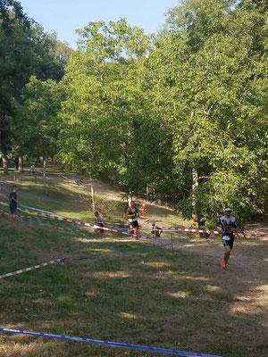 15 kms de cross de la triple race 2019 dans le parc de l'isle briand au lion d'angers