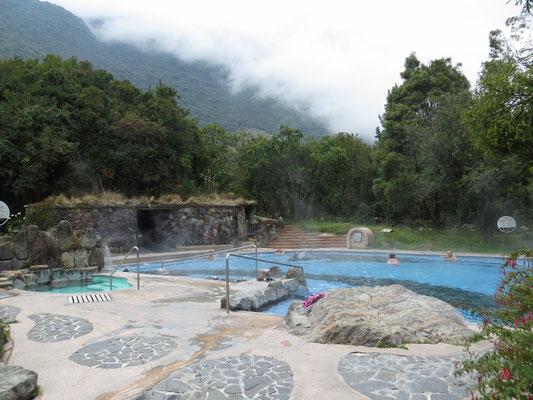 Schöne Becken in einer grünen Anlage in den Bergen.