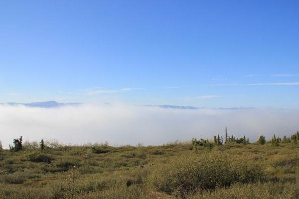 Zum Glück fuhren wir bald aus dem Nebel raus...