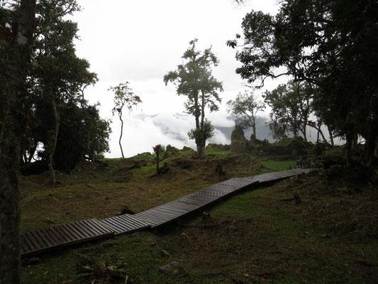 Holzstege führen durch die Anlage.