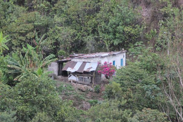 Überall leben Leute in kleinen Hütten.
