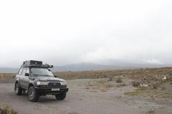 Baghira vor dem Chimborazo