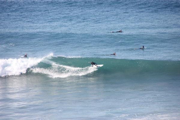 Beim Frühstück beobachteten wir jeweils die Surfer.
