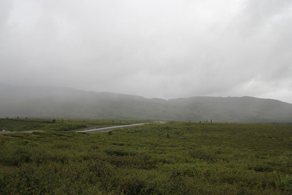 Schlechtes Wetter am Denali Highway...