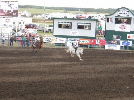 ... und dann musste der Cowboy 8 Sekunden drauf bleiben.