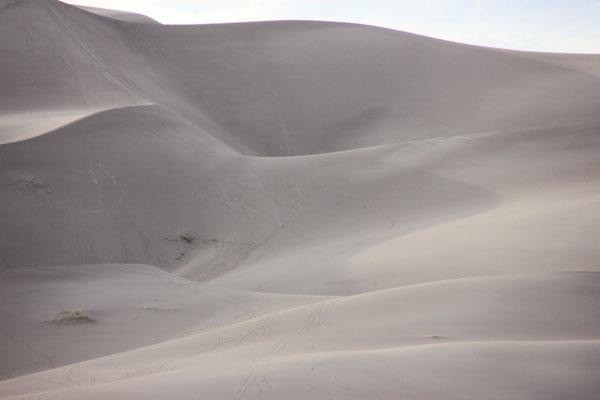 Beim Spaziergang in den Dünen.