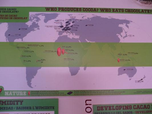 Wer isst wohl am meisten Schokolade weltweit? Die Schweizer natürlich!
