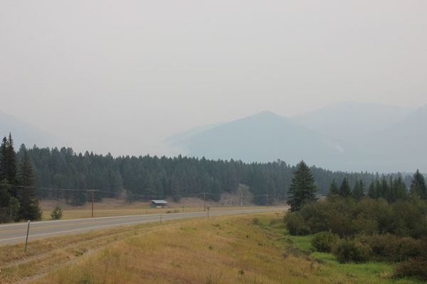 Die ersten Meter durch den Rauch der Waldbrände...