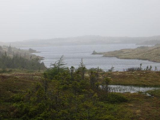 über Schneemobil-Trails vorbei an zahlreichen Seen