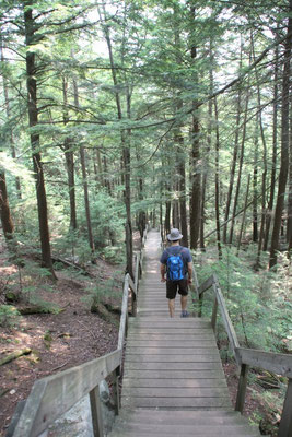 Treppen führen hinunter zum See.