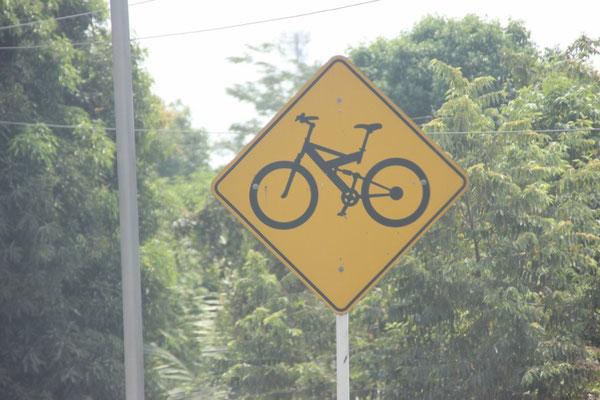 Und auch vollgefederte Mountainbikes sieht man eher selten :)