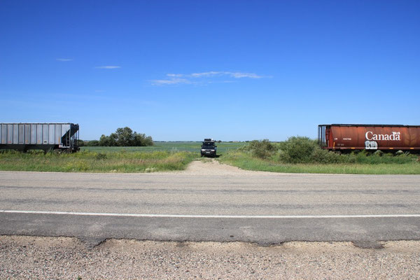 Bei jeder Zufahrt zu den Feldern musste der arme Lokführer eine Lücke lassen.