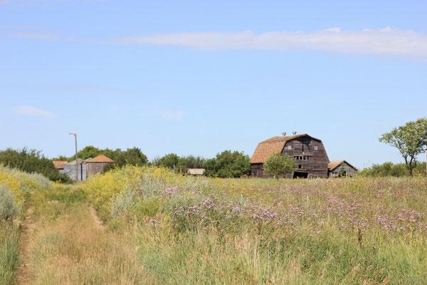 eine alte, verlassen Farm