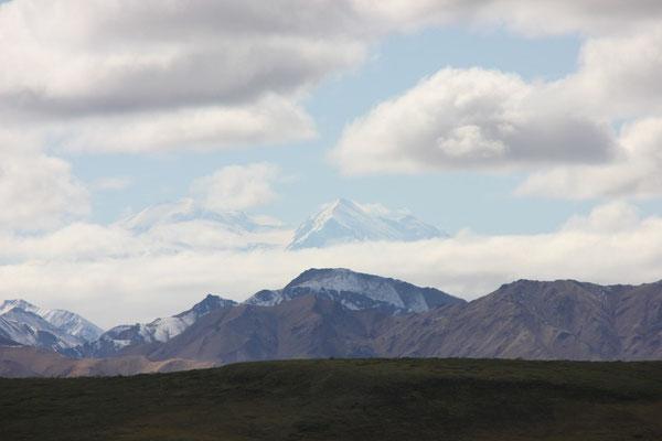 Die beiden Gipfel des Mt McKinley im Hintergrund.