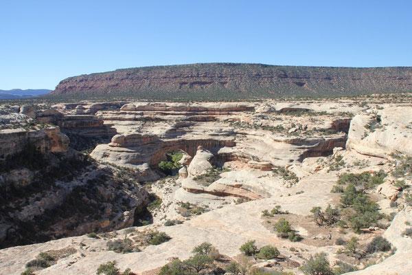 Die erste Brücke in der Canyonlandschaft