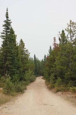 Fahrt auf der Mormon Peak Road