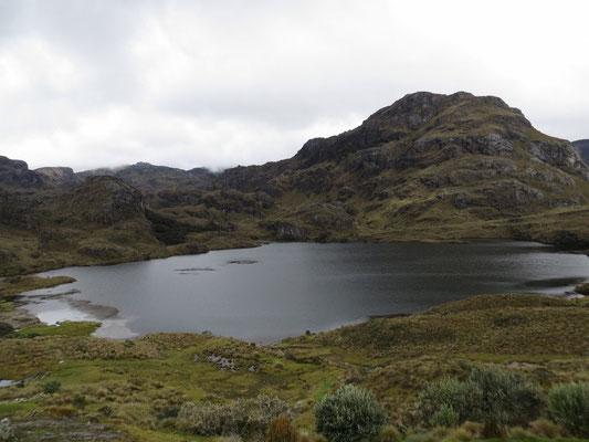 Laguna Toreador