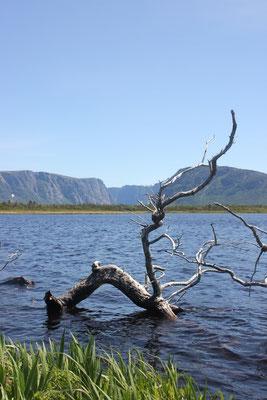 auf der Wanderung zum Western Brook Pond