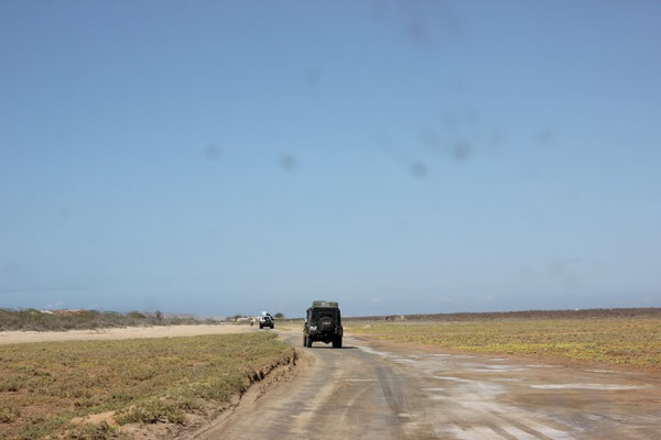 Unsere rasante Fahrt durch die Wüste.