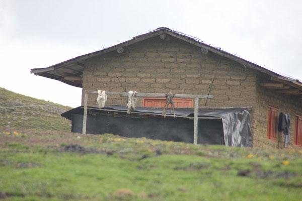 ... beim einzigen Haus, welches wir unterwegs gesehen haben. Die trocknen da irgendwelche Tierhäute.