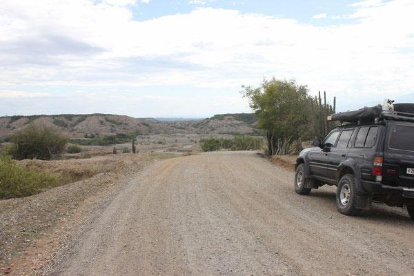 Die grüne Landschaft machte Wüstenlandschaft Platz.