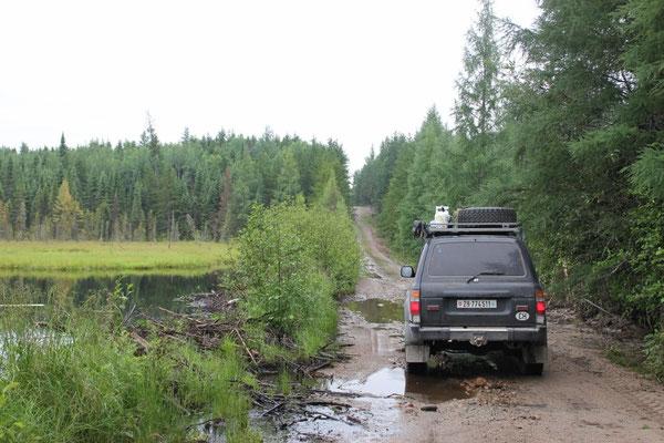 Vorbei an vielen kleinen Tümpeln, welche immer mal wieder den Weg überfluteten