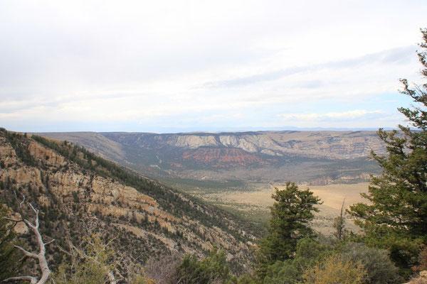 Die Sicht von der Kante in den Canyon, auf dem Canyonboden sieht man den Weg.