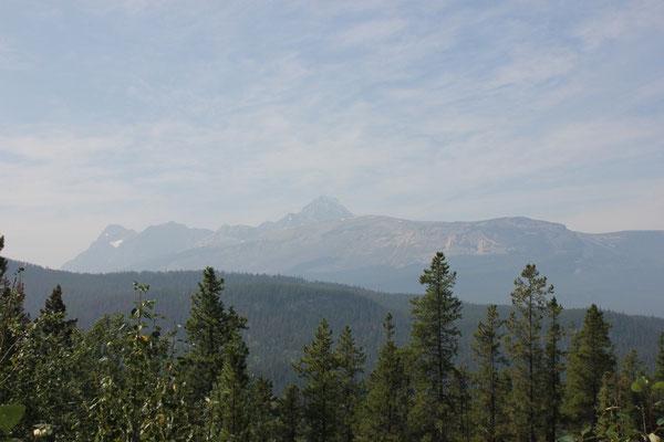 Man kann die schöne Aussicht vom Icefields Parkway zwar erahnen, ...
