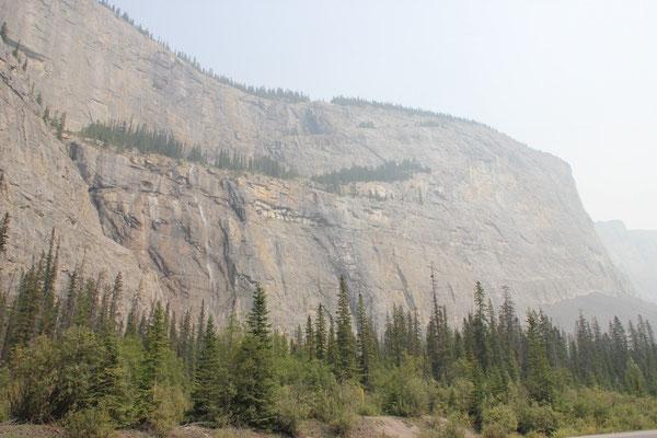 Wheeping Wall = Felswand mit mehreren kleinen Bächen und Fällen.