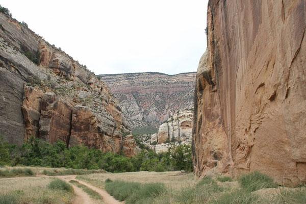 Der Canyon wurde immer enger.
