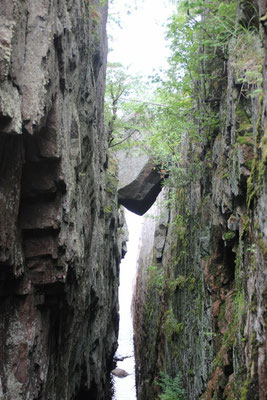 Der Weg zu den Agava Rock Pictographs schien verheissungsvoll.