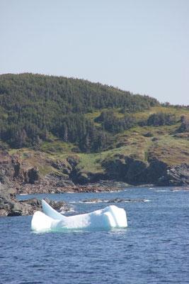 ein kleiner Eisberg direkt vor der Küste