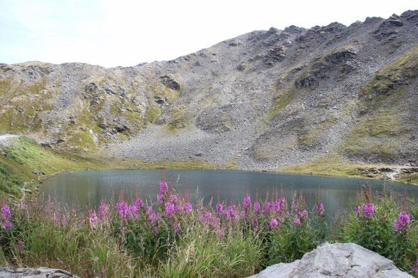 Kleiner See auf der Passhöhe