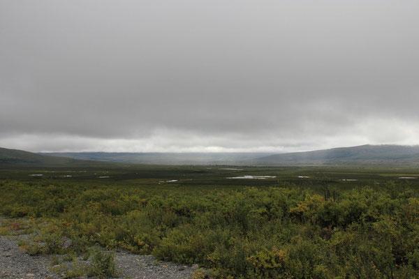 Im Buschland versteckten sich viele kleine Seen.