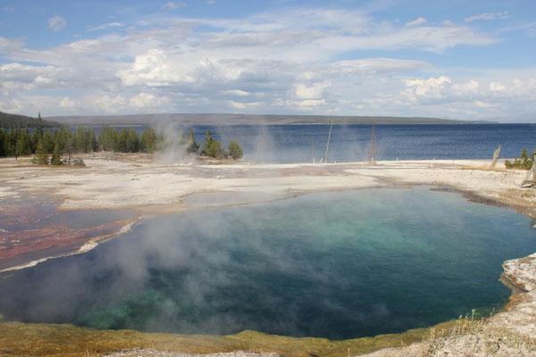 Die heissen Quellen direkt am Yellowstone Lake.