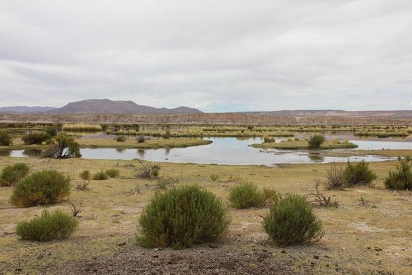 Eine erste Lagune vor der Lagunenroute.