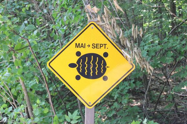 Auf dem Weg zum Forêt La Blanche sahen wir diese Tafel. Da dachten wir noch: ja klar... Wer's glaubt.