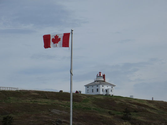 Wehende Kanada-Flagge am Cape Spear